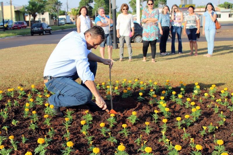 Goioerê comemora dia da Árvore com plantio de Ipês Amarelos na Rotatória da Avenida Santos Dumont