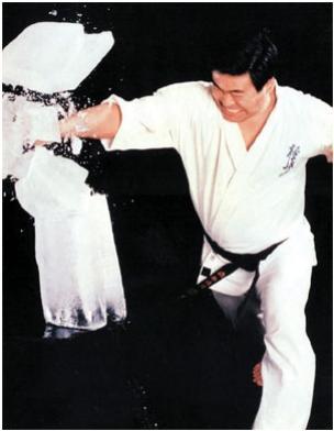Karatê - Kyokushin