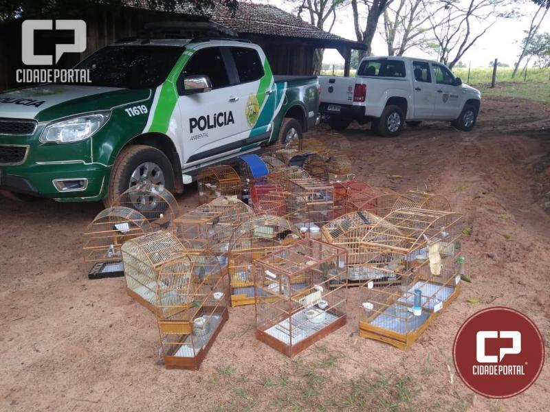 Polícia Ambiental de Umuarama fiscaliza criadores de passeriformes da fauna silvestre sem autorização