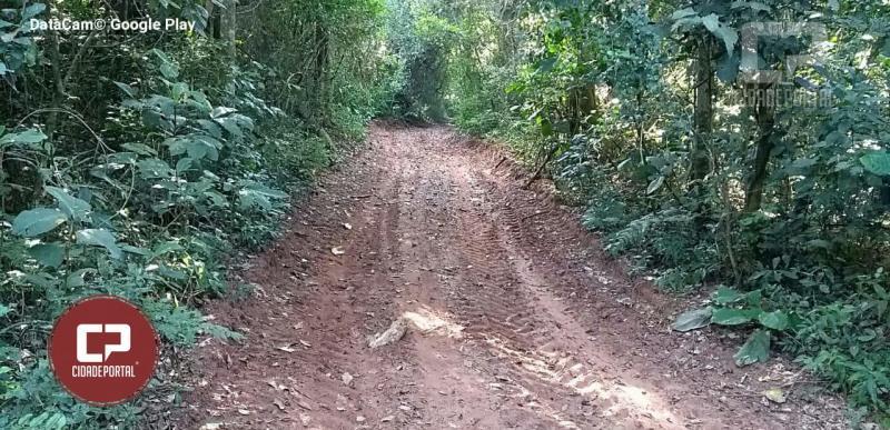 Polícia Ambiental de Umuarama recebe denúncia de desmatamento sem autorização em Planaltina do Paraná
