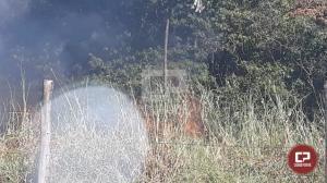 Mata ciliar no Cristo Rey foi alvo de queimada, Corpo de Bombeiros foi acionado