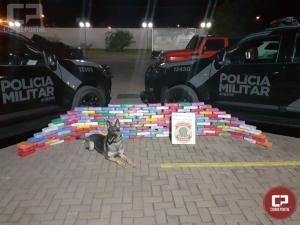 Polícia Militar realiza uma grande apreensão de droga em Maringá