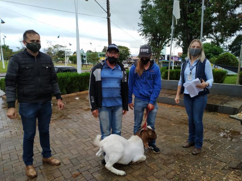 Caprinocultores de Roncador e região novamente são contemplados com reprodutores da raça Boer do programa Ovino/Caprinocultura