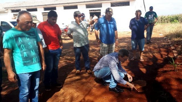 Controle de Formigas Cortadeiras em Quarto Centenário