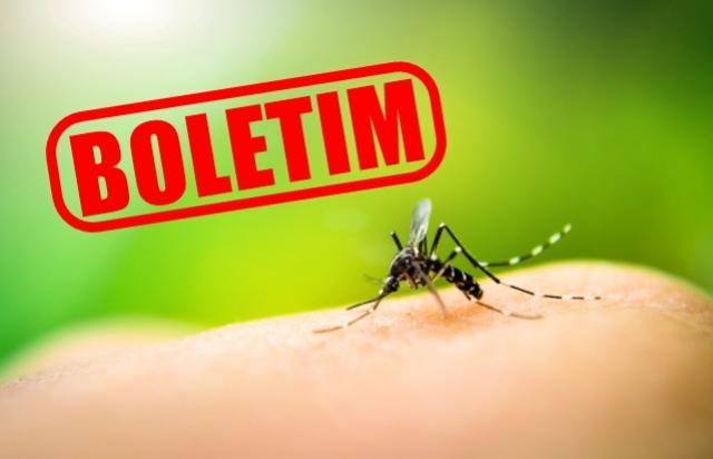 Secretaria de Saúde de Goioerê divulga boletim da Dengue