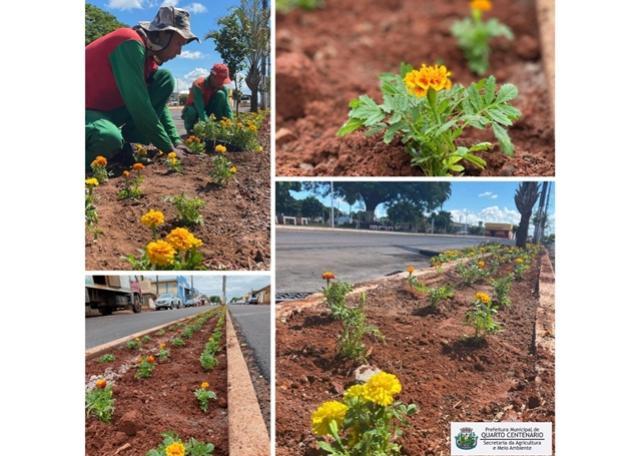 Secretaria da Agricultura e Meio Ambiente elabora iniciativa para plantio de 5.500 mudas de flores em Quarto Centenário