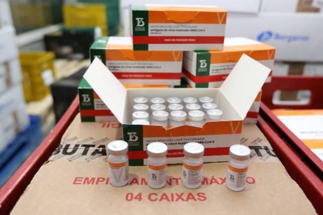 Paraná receberá mais 244,8 mil doses de vacinas contra a Covid-19