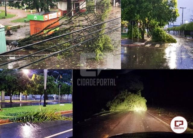Forte ventania derruba árvores em Goioerê e interdita PR-180