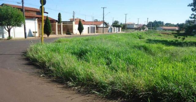 Prefeitura de Goioerê intensifica fiscalização em terrenos sem a devida conservação