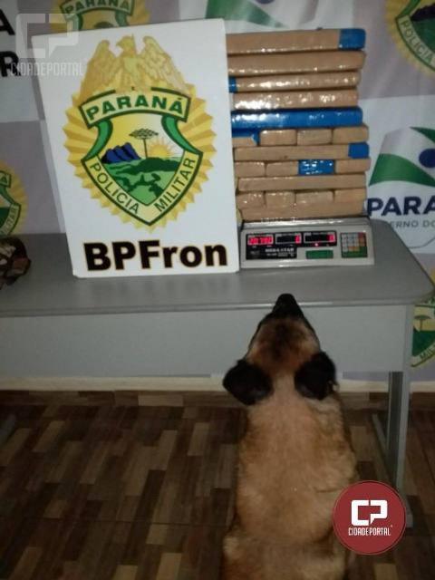 BPFron apreende entorpecente em ônibus após abordagem na cidade de Guaíra-PR