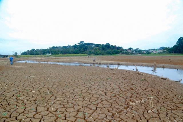 Estudo mostra que estiagem pode comprometer safra de inverno no Paraná