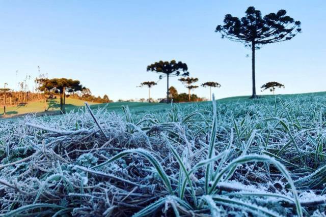 Paraná tem 16 cidades com temperaturas negativas, General Carneiro registrou -7,8ºC