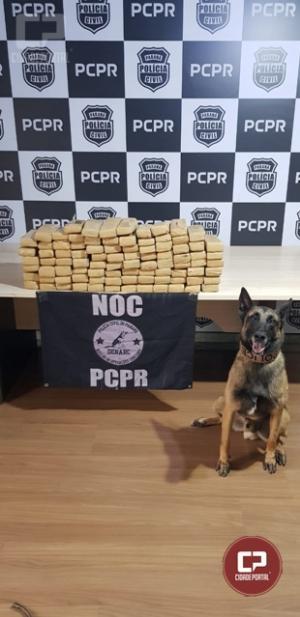 """Núcleo de Operações com Cães da Polícia Civil realiza mais uma etapa da """"Operação Fronteira Blindada"""""""