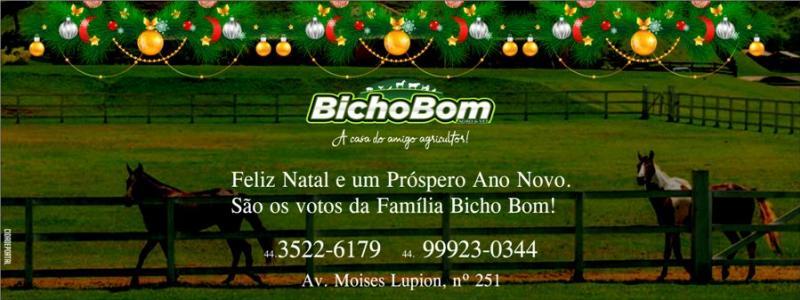 Um Feliz Natal e um Próspero Ano Novo de toda equipe Bicho Bom!