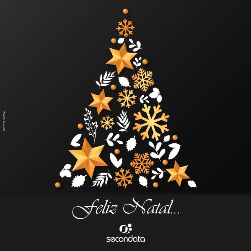 A Família Secondata deseja a todos um Feliz Natal e um Ano Novo de muito sucesso!