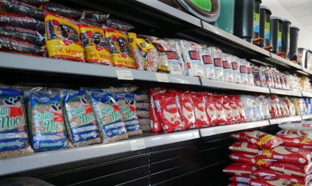 Famílias em situação de insegurança alimentar receberão cesta básica