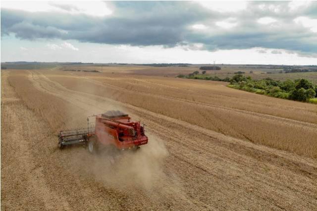 Banco do Agricultor Paranaense marca nova aposta do Estado no agronegócio